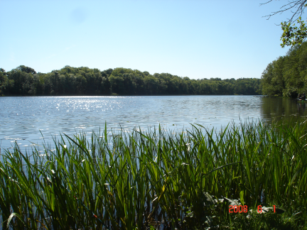 Karvio ežero krantas
